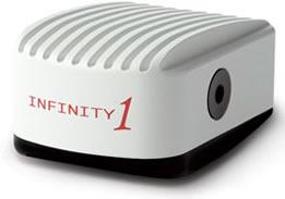 49 - infinity1