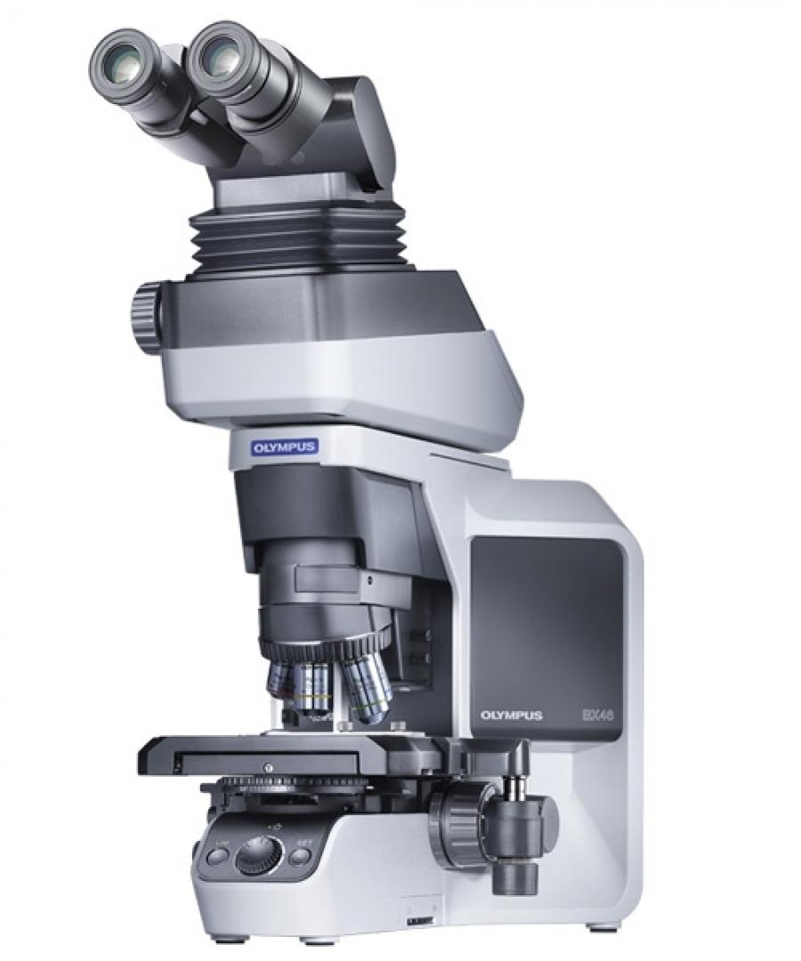 Olympus BX46 Microscope